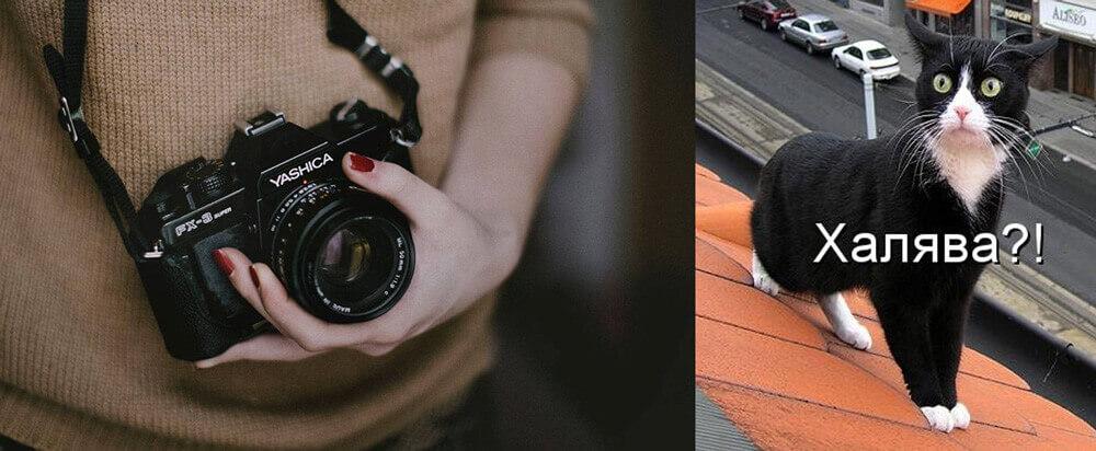 ТОП-20 лучших сайтов, где фотографии высокого качества можно скачать БЕСПЛАТНО!