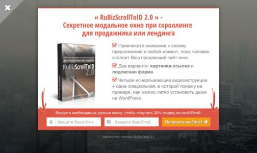 RuBizPanel 2.1 - Вариант 1