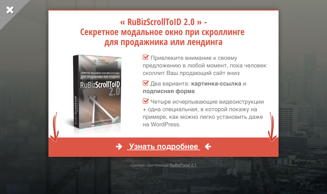 RuBizPanel 2.1 - Вариант 2